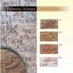 Palmetta Arizona